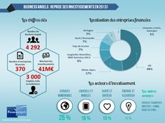 Business Angels in France 2013