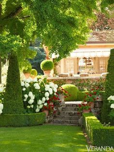 this might be a garden on a lake! love this morning light, the  steps the flowers and the topiary #gardensteps