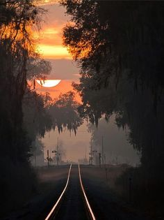 Title - Lake Park Sunrise - Artist Dan Wells - Medium Photograph - The early morning fog and clouds work together to create an exquisite sunrise over a railroad crossing in Lake Park, Georgia. By Train, Train Tracks, Beautiful World, Beautiful Places, Simply Beautiful, Trains, Lake Park, Road Trip Usa, Nocturne