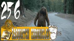 Bigfoot Hotspot Radio - SC EP:256 I ran so far away