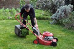 There are plenty of reasons to DIY. There might be reasons even more to hire a lawn care company. Here are 4 good ones. Lawn Care Companies, Lawn Maintenance, Best Investments, Calm, Diy, Bricolage, Do It Yourself, Homemade, Diys