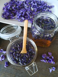 PASTU domov: Fialky v medu Herbs, Herb Garden, Herb, Herbs Garden, Medicinal Plants