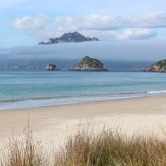 The view across to the Ruggedy Range mountains on Stewart Island, from Whenua Hou/Codfish Island. Cod Fish, Conservation, New Zealand, Beautiful Places, National Parks, Sky, Island, Mountains, Beach