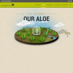 Discover Forever Living Products' Aloe journey... Discover what makes it an excellent and exciting company to work with! Contact globalaloeandco@gmail.com for more information on how you can get involved!
