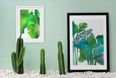 This print measures x and fits perfectly into Ikea, Kmart and Spotlight frames. Cactus Plants, Greenery, Rainbow, Texture, Frame, Prints, Rain Bow, Surface Finish, Picture Frame