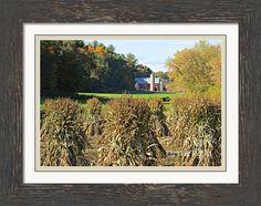 Amish Farm Country Fall Framed Print By Stephanie Forrer-Harbridge