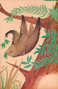 #sloth in the #wood