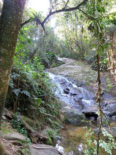 Parque da Cantareira - SP
