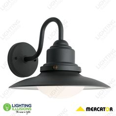Graphite Eve Powder Coated Steel Exterior Wall Light IP44