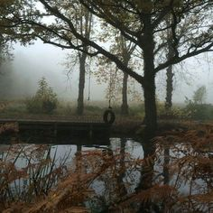 -fog ... River, Mountains, Nature, Outdoor, Outdoors, Outdoor Games, Outdoor Living, The Great Outdoors, Rivers