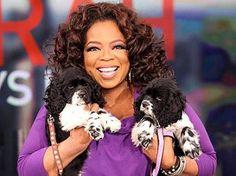 Oprah Winfrey with her springer spaniels, Sunny and Lauren