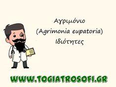 Αγριμόνιο (Agrimonia eupatoria)