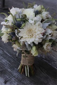 White dahlia, blue thistle, white Veronica, seeded eucalyptus and dusty miller bouquet. (Lovely technique, texture and style. Really like this bouquet! Dusty Miller Bouquet, Floral Wedding, Wedding Colors, Wedding Blue, Blue Wedding Flowers, Bridal Flowers, Bridal Boquette, November Wedding Flowers, White Dahlias