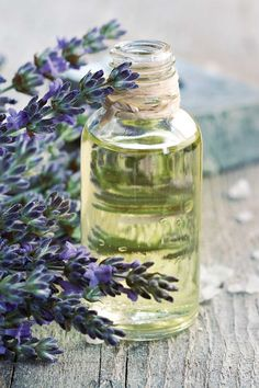 Lavender is used in aromatherapy for calming and relaxation. The essential oil is also antiseptic and anti-inflammatory.