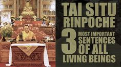 TAI SITUPA • 3 Most Important Sentences Of All Living Beings