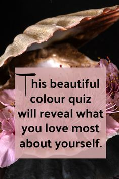 This Beautiful Color Quiz Will Reveal What You Love About Yourself is part of Color quiz - Beautiful Color Quiz Quiz time! I loved the images and the questions The results were spot on accurate for me Take the beautiful colour quiz and see True Colors Personality, Personality Tests, Color Quiz, Quizzes For Fun, Random Quizzes, Empath Quiz, Relationship Quizzes, Relationships, Element Quiz