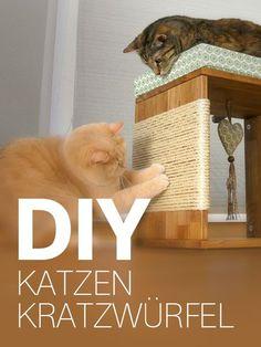 34 besten katzenm bel bilder auf pinterest k tzchen haustiere und hunde. Black Bedroom Furniture Sets. Home Design Ideas