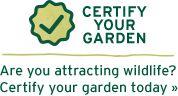 Certify your garden today & find native plants for your region! Native Plants, Herb Garden, Habitats, Shrubs, Bees, Nativity, Landscaping, Wildlife, Herbs Garden