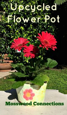 Upcycled Flower Pots  Kids love this sensory activity that uses plaster of paris, plastic flower pots and paint.