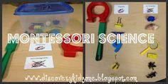 Montessori Science.  Magnetic, non-magnetic.