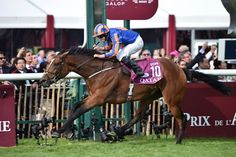 Four-year-old filly Found, last year's Breeders' Cup Turf (gr. IT) winner, led a sensational 1-2-3 finish for trainer Aidan O'Brien when taking the Qatar Prix de l'Arc de Triomphe (Fr-I), Europe's premier race, Oct. 2, 2016 at Chantilly.