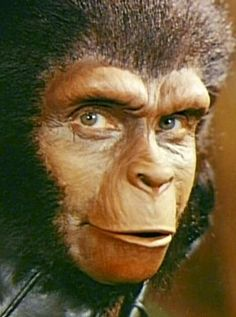 Archives Of The Apes: Planet Of The Apes Zira protrayed by Kim Hunter. Fiction Movies, Science Fiction Art, Kim Hunter, Monster Makeup, Halloween Painting, Planet Of The Apes, Sad Faces, Post Apocalypse, Fantasy Makeup