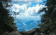 Google+RIVER INABO PONCE PUERTO RICO