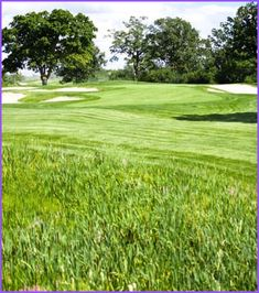 """Long Drive Golf Tips for the Beginner. Maybe now you're thinking """"what does the ground have anything to do with golf?"""" The answer is definitely a lot.... Golf Driver Tips, Golf Drivers, New Drivers, Golf Tips, One Of The Guys, Driving Tips, Long Drive, New Golf, Improve Yourself"""