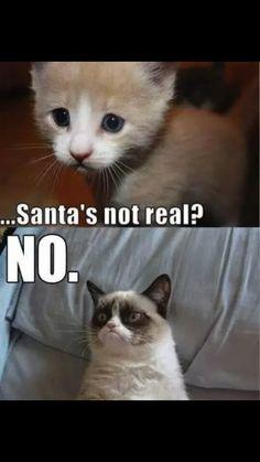 Santa's not real?