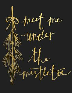 Meet me under the mistletoe <3