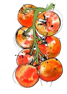 Layla Boyd Illustration: You Say Tomato, I Say. Watercolor Fruit, Watercolor Sketch, Watercolor Flowers, Watercolor Paintings, Watercolors, Doodle Drawing, Vegetable Painting, Watercolor Projects, Fruit Painting