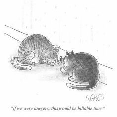 """If we were laywers, this would be billable time."" cat legal humor"