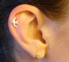 Sparrow Bird Cartilage Earring Tragus Helix by MidnightsMojo