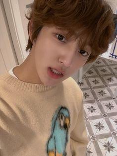 Jaehyun, Twitter Layouts, Woollim Entertainment, Fans Cafe, Golden Child, Kpop, Boy Groups, Children, Cute