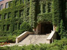 Princeton University. Ivy league, for sure.
