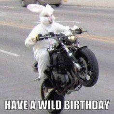 Have a Wild Birthday.