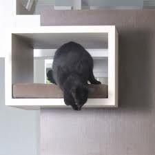 diy cat wall thingy
