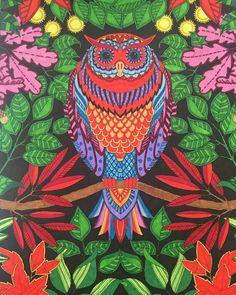 Johanna Basford Secret Garden Owl using Bic Markers