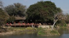 Gomo Gomo Game Lodge in Klasserie Private Reserve of the Greater Kruger National Park, South Africa - Photo taken by BradJill