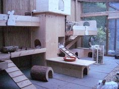 Very cool playroom setup for small pets. My chinchillas would love all the hideouts and multiple levels. Rabbit Shed, Rabbit Run, House Rabbit, Rabbit Toys, Pet Rabbit, Hamsters, Chinchillas, Gerbil, Rabbit Playground