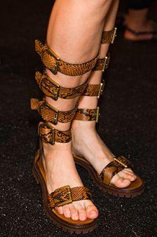 Snake Skin Gladiators