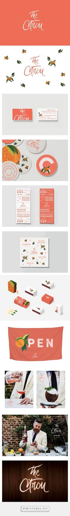The Citron Branding / by Maud Passini beautiful hand painted elements