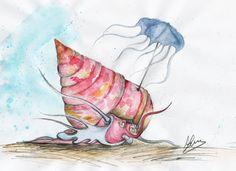Shell-ter   Zizyphinum Umbrellata
