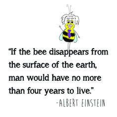 """Facts brought to you by Buzz Greetings. """"If the bee disappears from the surface of the earth, man would have no more than four years to live"""". - Albert Einstein buzzgreetings.etsy.com"""