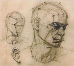 академический рисунок. конструктивная зарисовка головы человека. графика.: