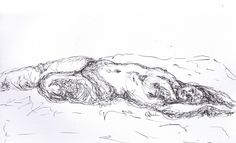 Drawing 45! #50daychallenge 10 minute #lifedrawing Jaime Quinn art