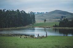 Haycroft Farm, KZN Midlands South African Weddings, Wedding Venues, Mountains, Nature, Travel, Wedding Reception Venues, Naturaleza, Trips, Wedding Places