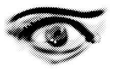 PLUGINS_Corel FORUM :: Zobacz temat - Zdjęcie przekształcony na raster wektorowy