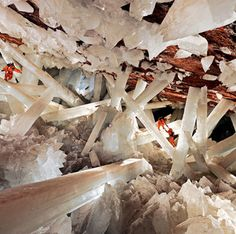Huge crystal cave in Mexico - I would love to see this!  The Naica Mine of the Mexican state of Chihuahua is a working mine that is best known for its extraordinary selenite (gypsum) crystals.