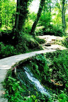 Jajce forest path
